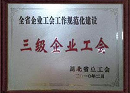 三级企业工会