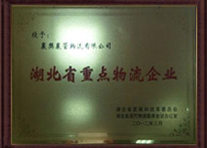 湖北省重点合乐彩票app下载企业